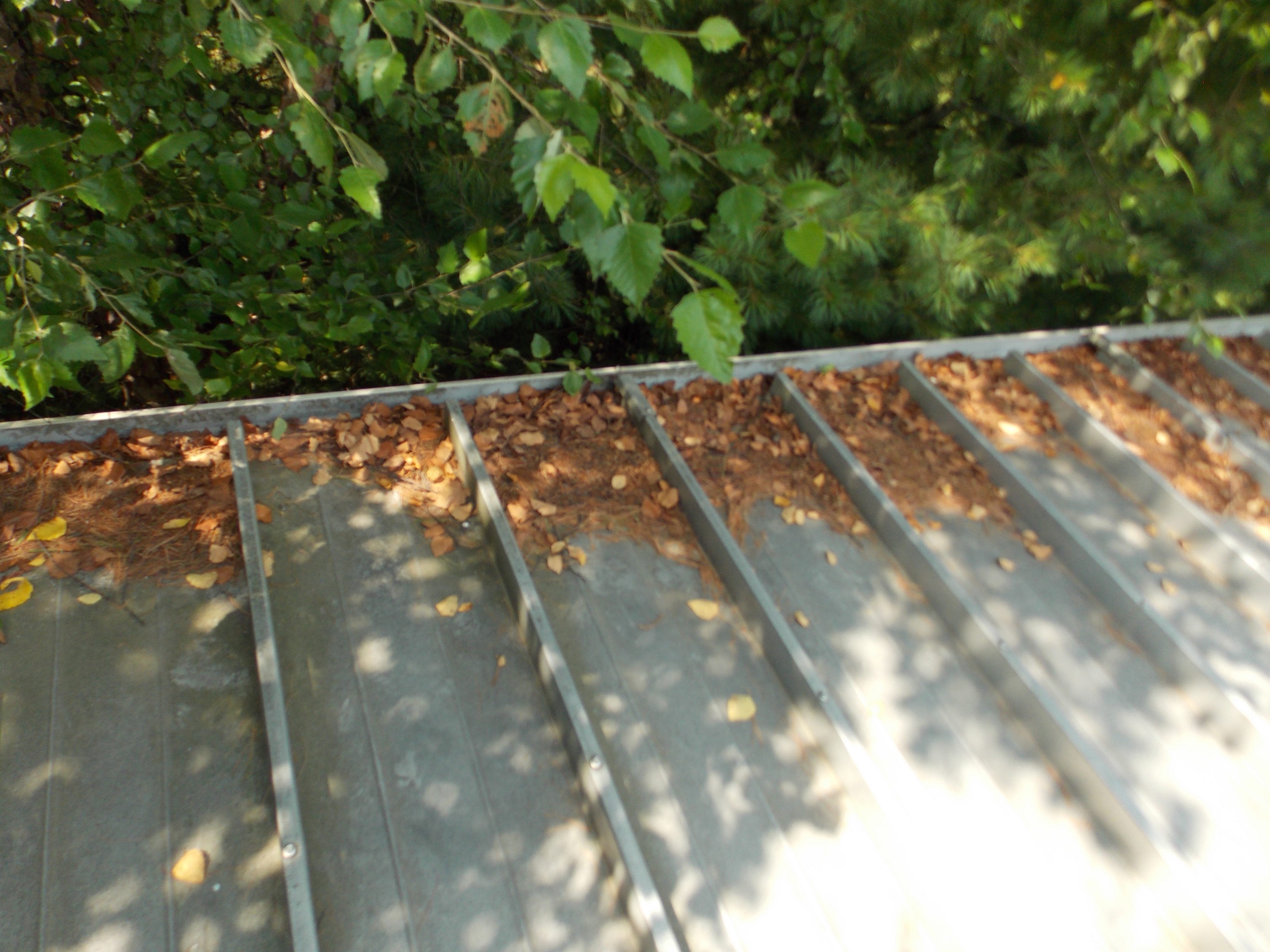 Clogged Gutter Gsm Roofing