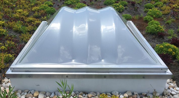 Skylight on vegetative roof.