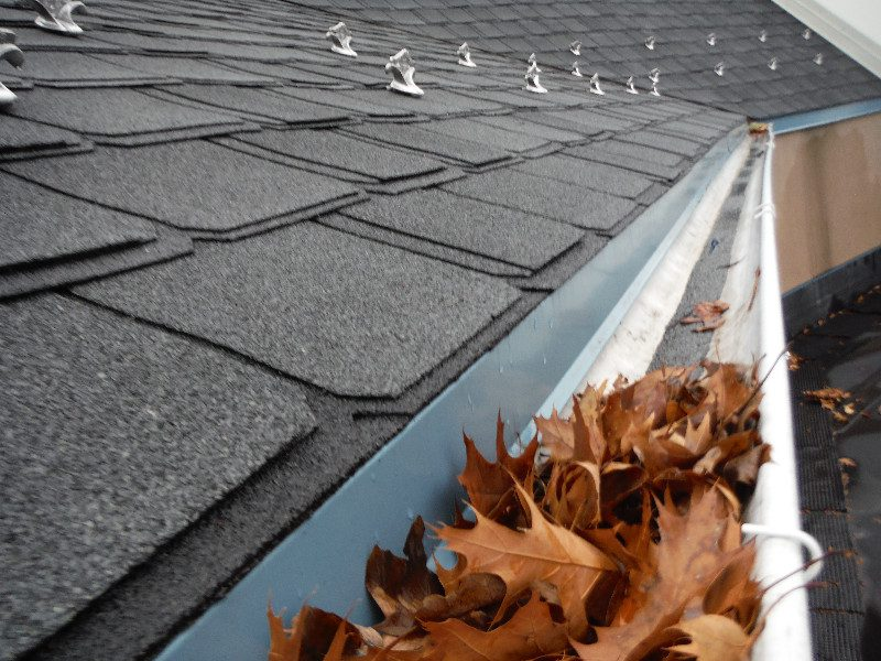 Gutter Clogged With Falling Leaves Gsm Roofing
